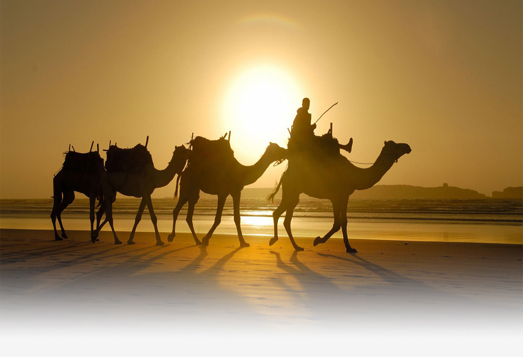 Essaouira-ride-on-camel-at sunset
