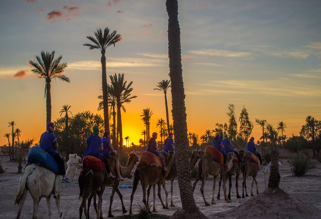 camel ride at marrakech