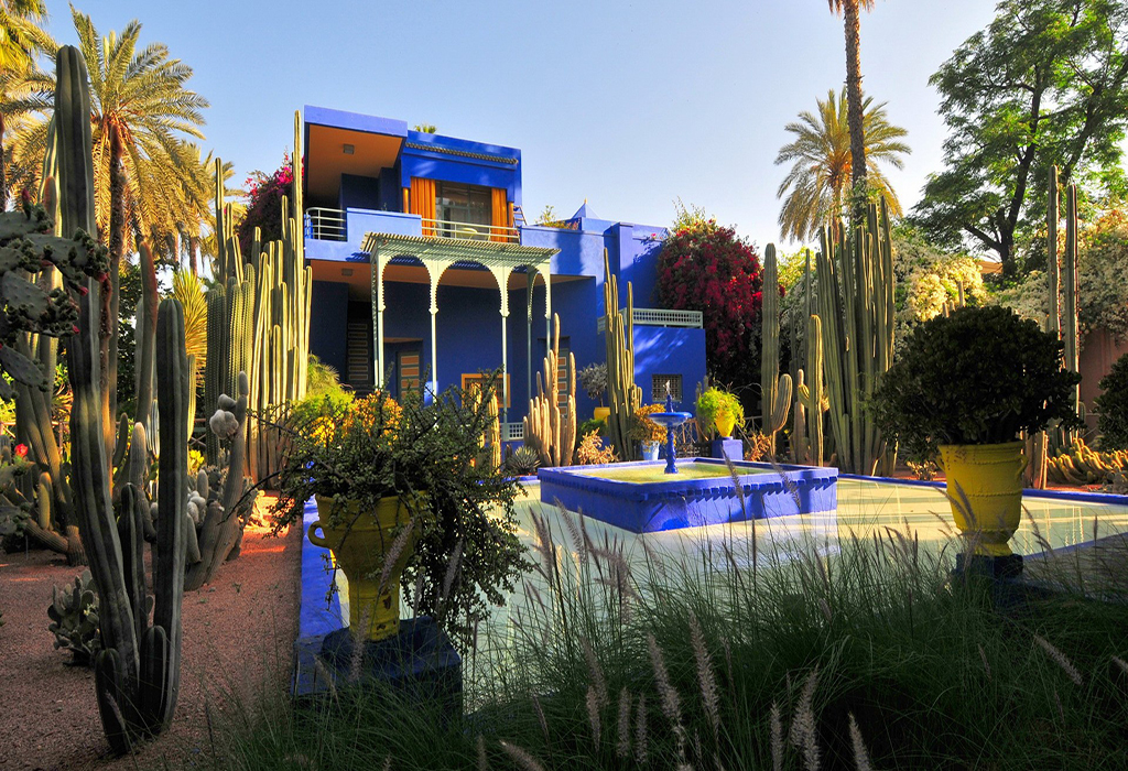 Morocco-Marrakech-Jardin-Majorelle-Nature-Wallpapers-and-photos