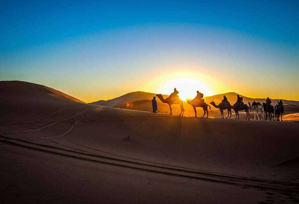 camel-ride-desert -fez-to-marrakech tours